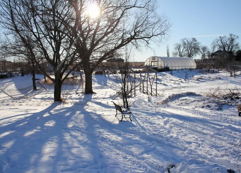 snowscape on farm in Nebraska