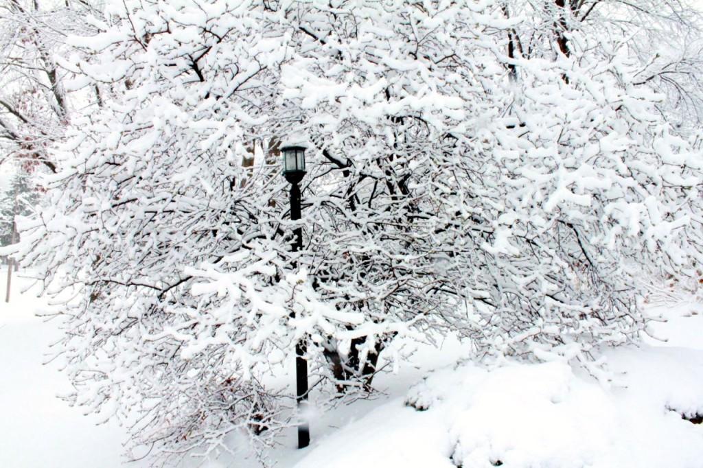 snowohio