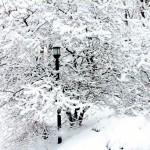 Waking up in Narnia . . . er, Ohio