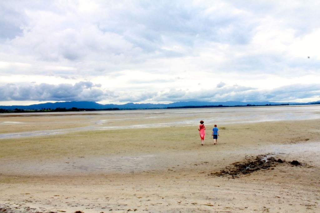 We like to walk here when the tide goes out, to see what sorts of shells and sea critters we can find.