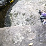 Another tramp, another story: climbing up Wairere Falls