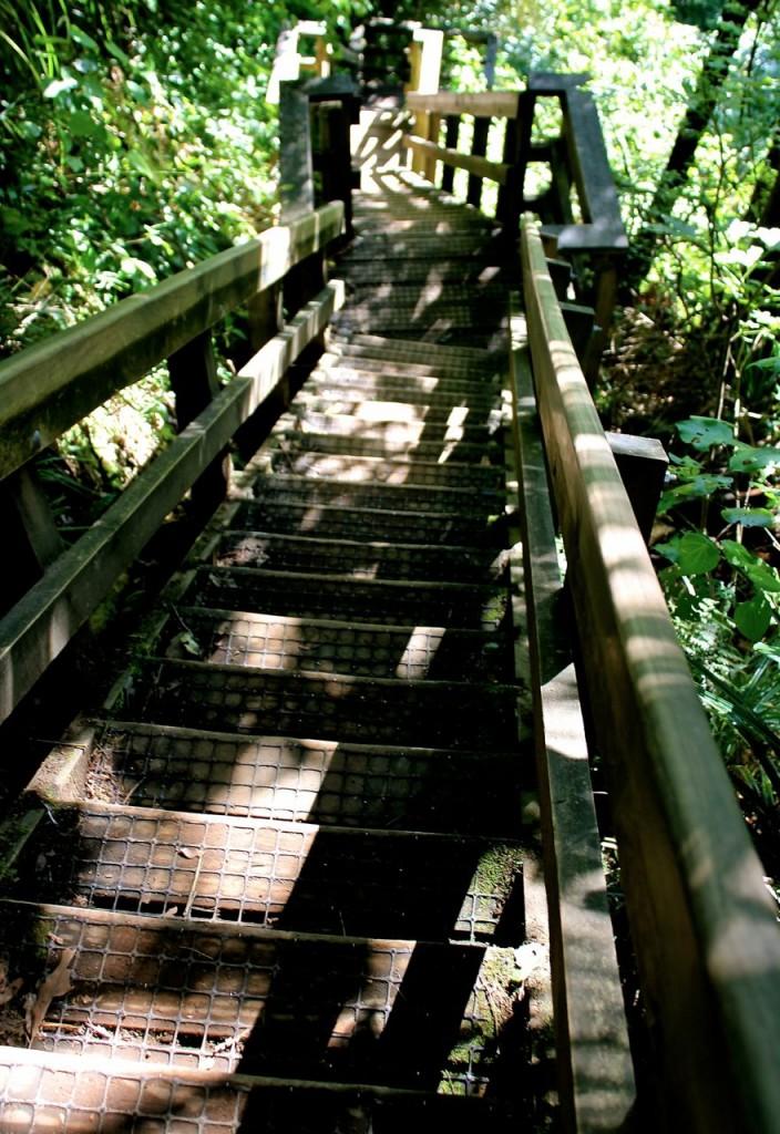 walkfalls8